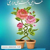 پایگاه تبیین تک همسری اسلامی